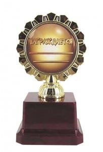 фото Кубок Золотой Человек #2