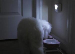 фото Светодиодная лампа Mighty Light c датчиком движения #3
