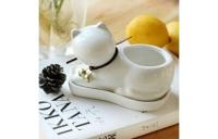 Подарок Травянчик Белый котик