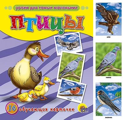 Купить Птицы. 16 обучающих карточек, 978-5-378-03080-4