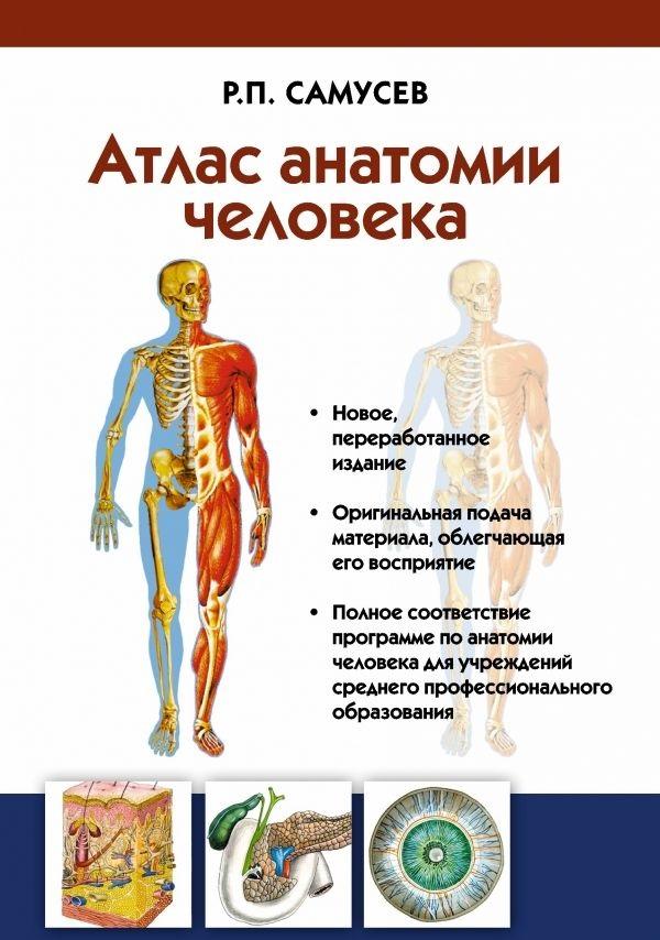 Купить Атлас анатомии человека. Учебное пособие, Рудольф Самусев, 978-5-17-083947-6
