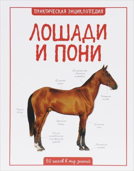 Лошади и пони, Камилла Де Ла Бедуайер, 978-5-389-08850-4  - купить со скидкой