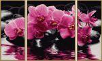 Набор для творчества 'Орхидеи'