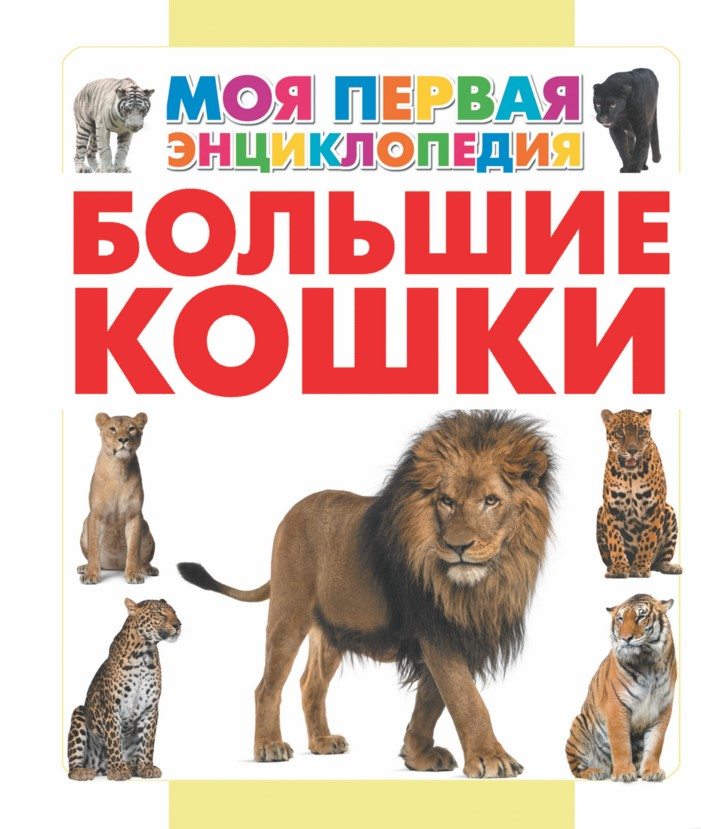 Купить Большие кошки, Анна Спектор, 978-5-17-089977-7