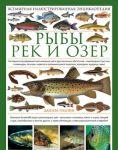 Книга Рыбы рек и озер. Всемирная иллюстрированная энциклопедия