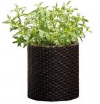 Подарок Горшок для цветов 'Cylinder Planter Small' коричневый
