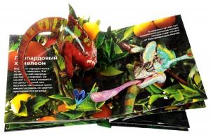 фото страниц Живая книга джунглей #3