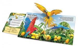 фото страниц Живая книга джунглей #4