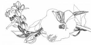 фото страниц Волшебные цветы. Раскрась свой мир и добавь жизни цвета #4