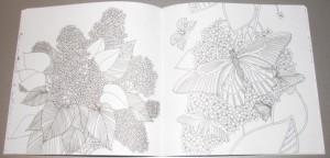 фото страниц Волшебные цветы. Раскрась свой мир и добавь жизни цвета #3