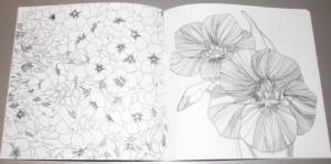 фото страниц Волшебные цветы. Раскрась свой мир и добавь жизни цвета #2