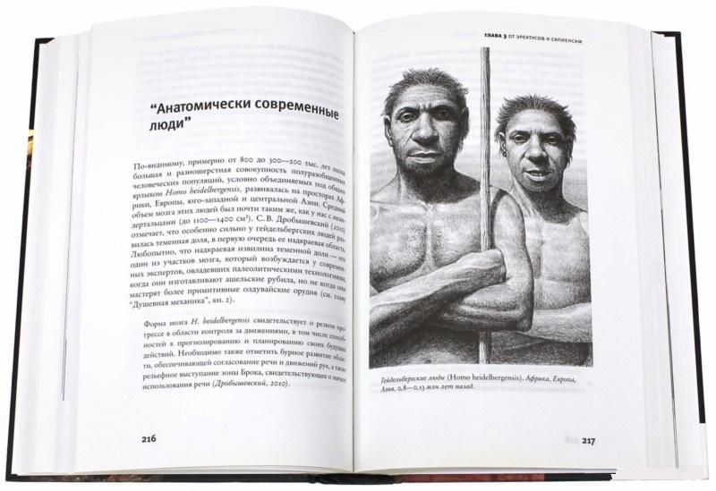Скачать бесплатно книгу александра маркова эволюция человека