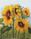 Подарок Картина на холсте по номерам 'Цветы Солнца'