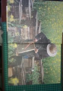 фото страниц Пчеловодство. Практическая энциклопедия #3
