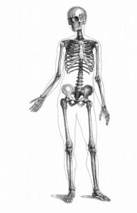 фото страниц Encyclopedia Pathologica: Модицина #3