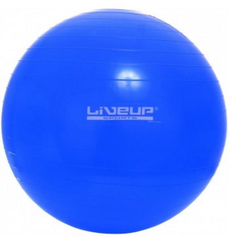 Купить Фитбол LiveUp (LS3221-65b)