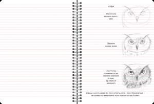фото страниц Скетчбук 'Рисуем животных' (мятный) #4