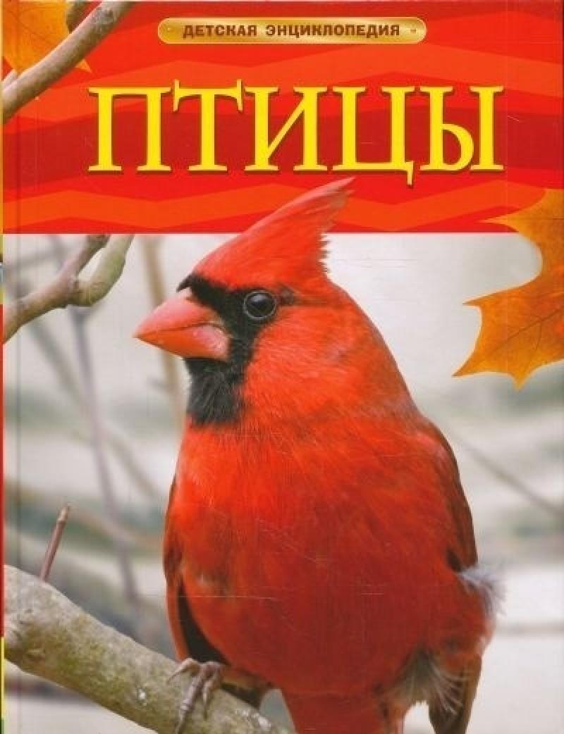 Купить Птицы, Джилл Доэрти, 978-535-305-766-6