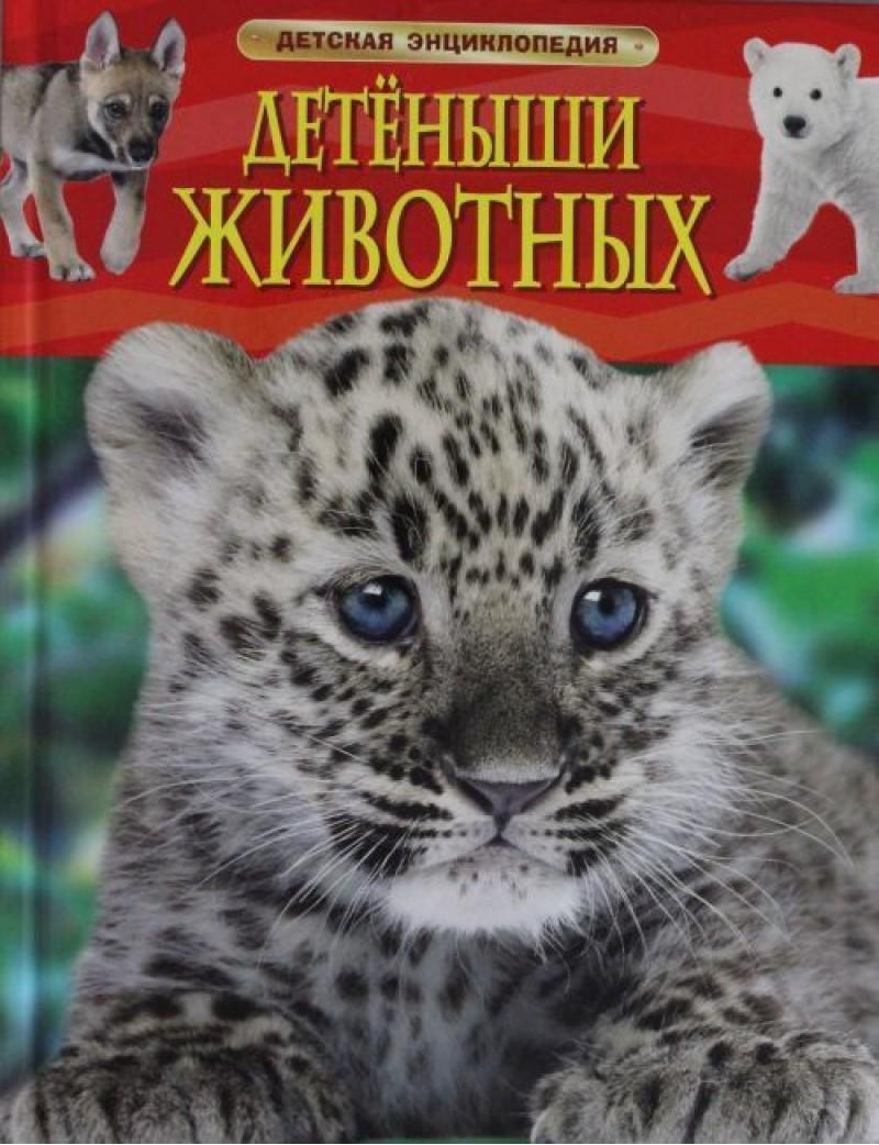 Купить Детёныши животных, Ирина Травина, 978-5-353-06868-6