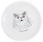Подарок Тарелка 'Удивленный кот'