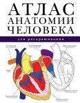 Книга Атлас анатомии человека для раскрашивания