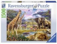 Пазл 'Разноцветная Африка' (RSV-163335)
