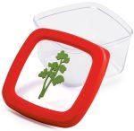Подарок Контейнер для продуктов Snips 'Зелень', 0,5 л