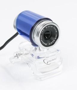 Веб-камера Gembird CAM100U-B