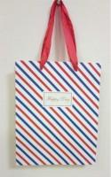 Подарок Подарочный пакет FX-M-302 (18 х 23 х 10 см)