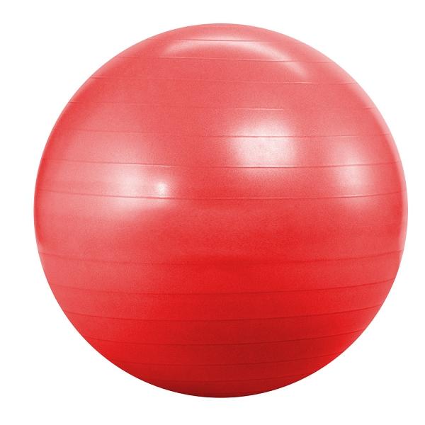 Купить Фитбол Landfit Fitness Ball 55cm