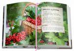 фото страниц Вкусный Понедельник. Не только джем. Большая книга о варенье, соленьях, заготовках #6