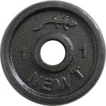 Диск стальной Newt Home 1кг (TI-0011)