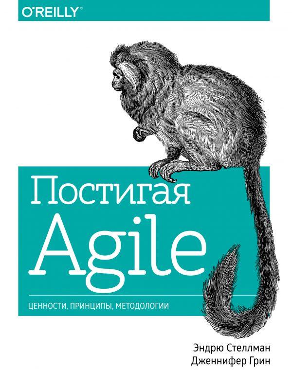 Купить Постигая Agile. Ценности, принципы, методологии, Дженнифер Грин, 978-5-00100-614-5, 978-5-00117-035-8
