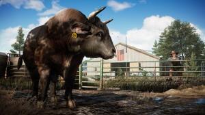 скриншот Far Cry 5 PS4 #5