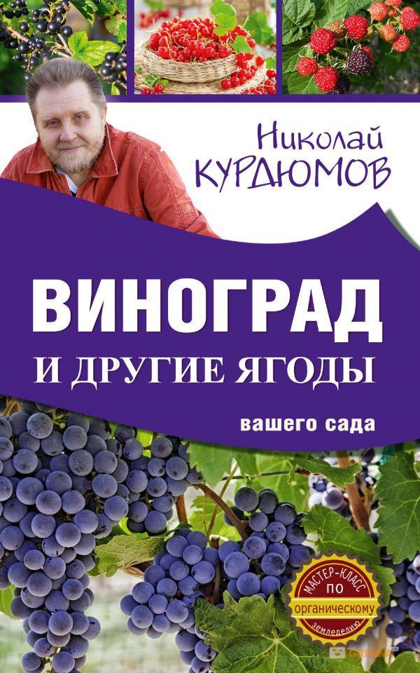 Купить Виноград и другие ягоды вашего сада, Николай Курдюмов, 978-5-17-101253-3