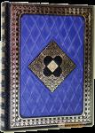 Книга Нострадамус. Вещие центурии