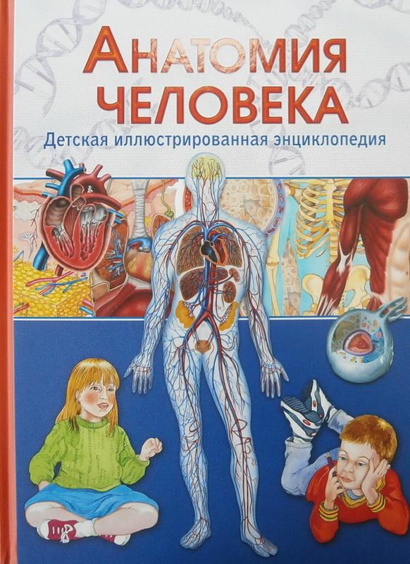 Купить Анатомия человека. Детская иллюстрированная энциклопедия, Винченцо Гуиди, 978-5-9567-2058-5