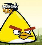 Книга Angry Birds. Чак. Книжка-картинка