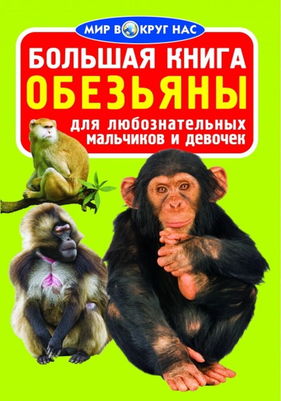 Купить Большая книга. Обезьяны, Олег Завязкин, 978-617-08-0335-1