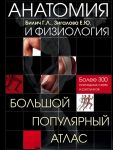 Книга Анатомия и физиология. Большой популярный атлас