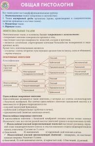 Книга Общая гистология