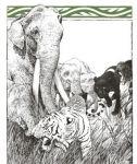 фото страниц Книга джунглей #4