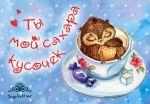 Книга Магнитная открытка 'Совы. Ты мой сахара кусочек!'