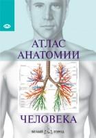 Книга Атлас анатомии человека