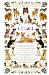 Книга Собаки. Иллюстрированный гид