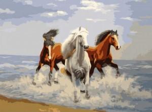 Рисование по номерам Идейка 'Свежий ветер' (KH2430)