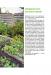 фото страниц Правильная организация приусадебного участка для повышения урожайности #4