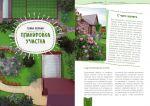 фото страниц Дача мечты от Галины Кизимы. Самоучитель для начинающих садоводов и огородников #5