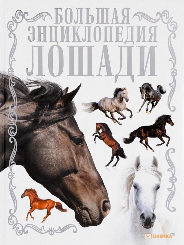 Лошади. Большая энциклопеди, Анна Спектор, 978-5-17-105084-9  - купить со скидкой