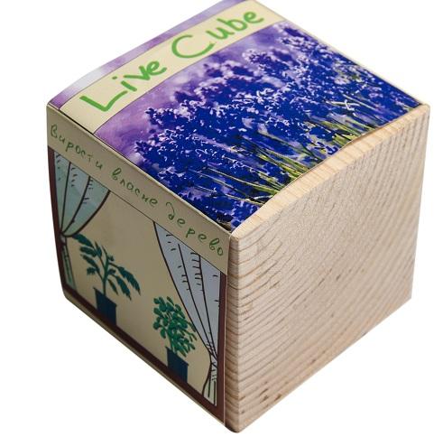 Купить Набір для вирощування Brinjal 'Live Cube' лаванда